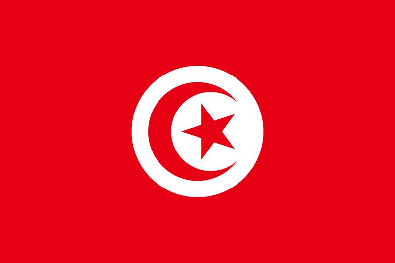 Native Speaker Arabisch (Tunesisch) - Flagge